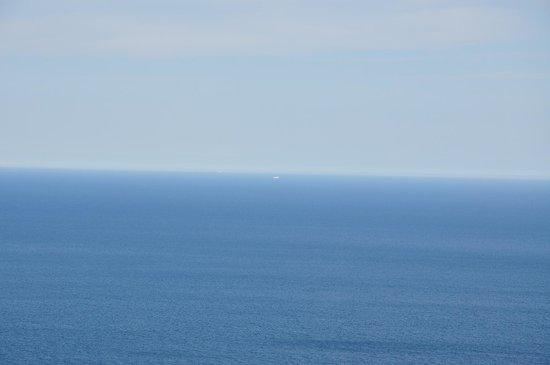 Signal Hill: icebergs in the distance