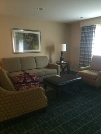 DoubleTree Suites by Hilton Hotel Charlotte - SouthPark: Living Area