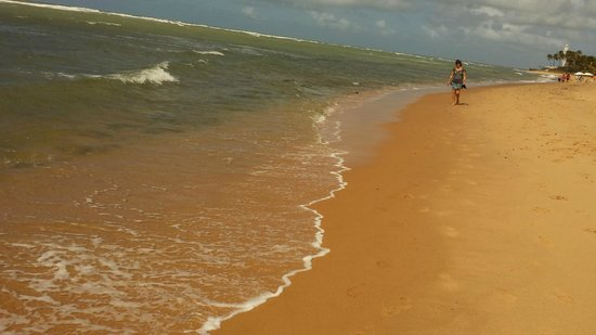 Forte Beach : Praia do Forte/BA