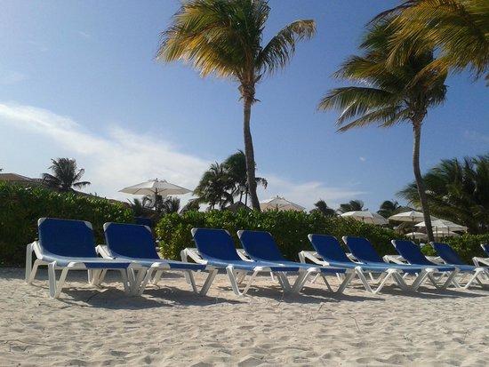 Ocean Maya Royale: The beach terrace