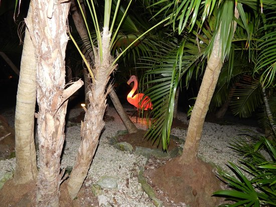 Ocean Maya Royale: Flamingo lights in the grounds