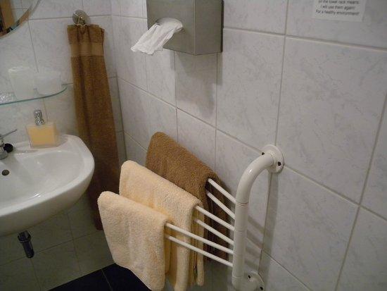 Gohrisch, Alemania: Bathroom