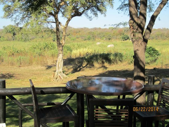 Protea Hotel by Marriott Kruger Gate: View of Kruger Park from the Deck