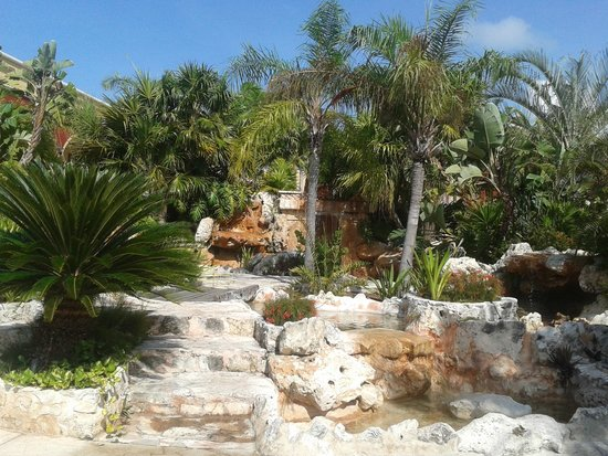 Ocean Maya Royale: waterfall before going to dining area