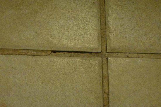BEST WESTERN PLUS Henderson Hotel: Creaky Tiles & Broken Grout
