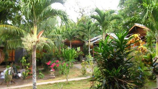 Daniel's Resort aka Daniel's Homestay: Jardin verdoyant