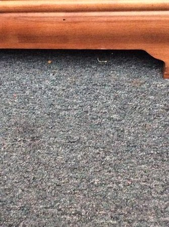 Howard Johnson Resort Hotel - St. Pete Beach: dirty carpet