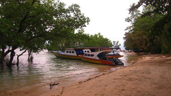 Daniel's Resort aka Daniel's Homestay: Un des bateaux de plongée