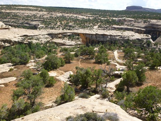 Natural Bridges National Monument: A bridge