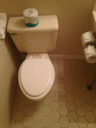 International Inn and Suites on Cape Cod : Toilet is jammed up against the tub, are you suppose to sit sideways?