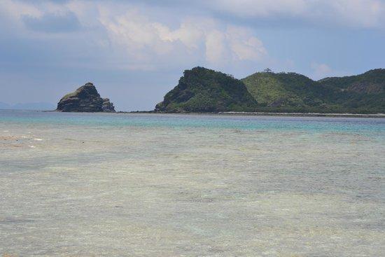 座間味: fotografía de Zamami-jima Island, Zamami-son - TripAdvisor
