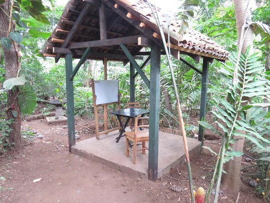 La Mariposa Spanish School and Eco Hotel: One of the classrooms