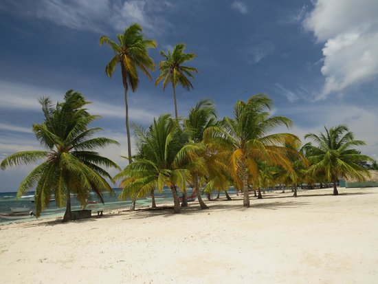 Dreams La Romana Resort & Spa : ile de Saona