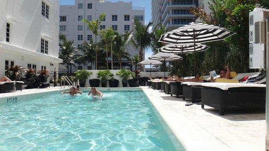 Hotel Croydon: Solarium y piscina