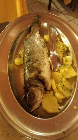 Mabrouk : insieme a questa spigola è arrivato l'altro secondo piatto che era una frittura che non ho fatto