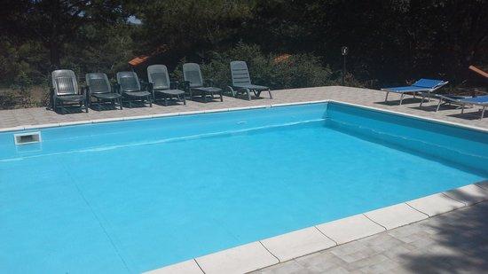 La Casa Nel Bosco : la piscina