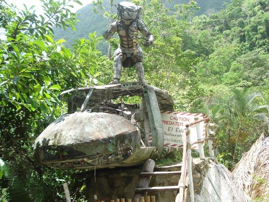 Parque Nacional Ecoturistico El Eden de Vallarta: depredador el alienigena