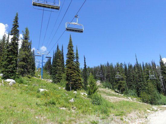 Big White Ski Resort : View up the mountain