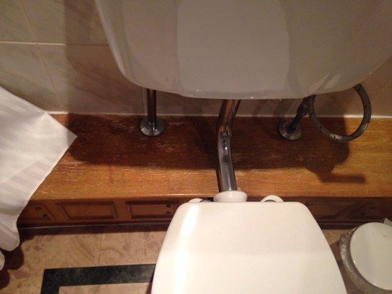 Hilton Puckrup Hall, Tewkesbury: The Deluxe bathroom