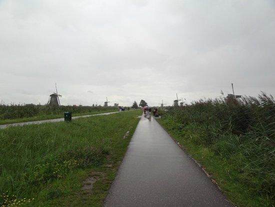 Réseau de moulins de Kinderdijk-Elshout : Kinderdijk Windmills