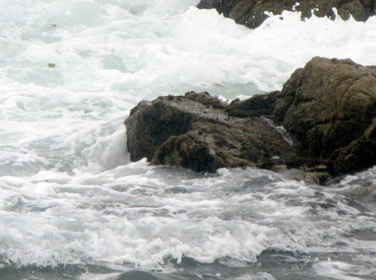 17-Mile Drive : Restless Sea, 17 mile drive, Monterey, Ca
