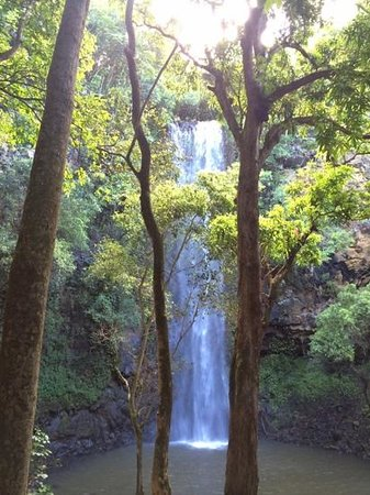 Wailua Kayak Adventures: Secret Falls
