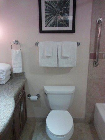 Marriott's Maui Ocean Club  - Lahaina & Napili Towers : Master bath