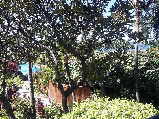 Marriott's Maui Ocean Club  - Lahaina & Napili Towers : View