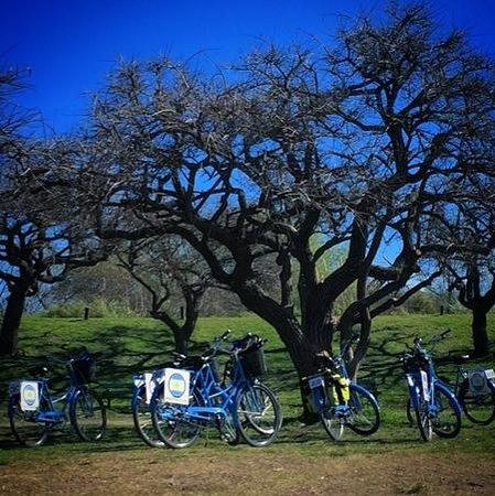 Biking Buenos Aires: Reserva Ecológica!
