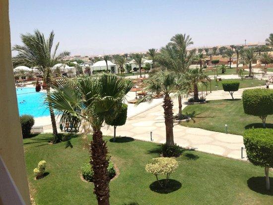 Desert Rose Resort : вид на бассейн