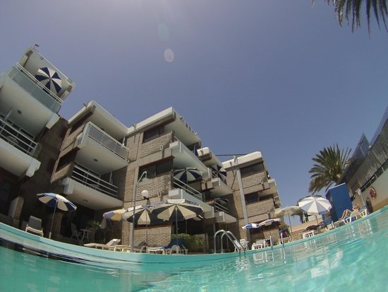 Apartamentos El Paseo: Vistas desde la piscina