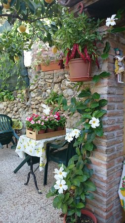 Bed & Breakfast Giulia : Fiori del B&B