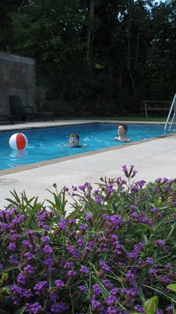 Ilex Lodge Self Catering Apartments: Ilex Lodge heated pool