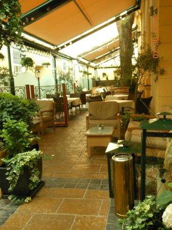 Hotel Stefanie: Garden