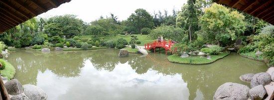 Jardin Japonais : Japanese bridge
