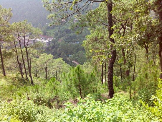 Khetarpal Marg