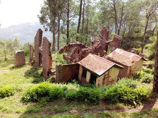 Solan, India: sanavar breezy hill