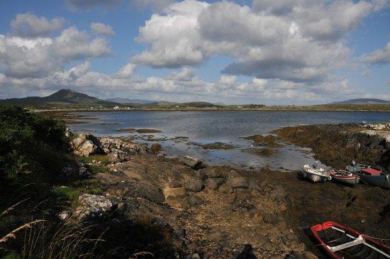 Rossroe Lodge B&B: une vue sur la baie