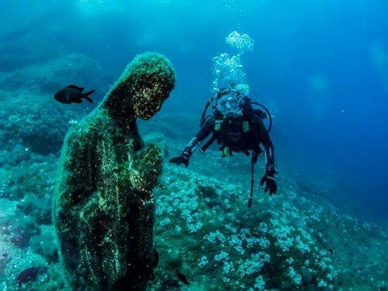 Madonnella del vervece picture of punta campanella diving center massa lubrense tripadvisor - Dive residence massa lubrense ...
