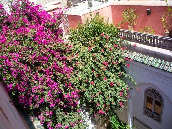 Riad Hadika Maria : Top terrace