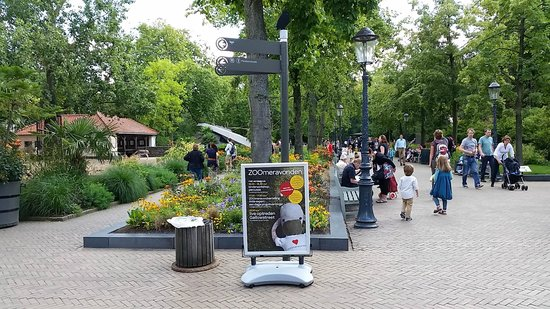 Artis Zoo, Amsterdão.