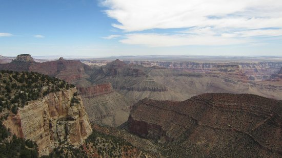 Grand Canyon North Rim : View of the canyon