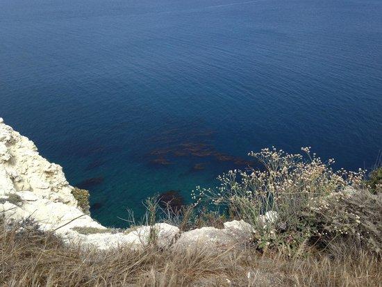 Santa Barbara Adventure Company : so clear