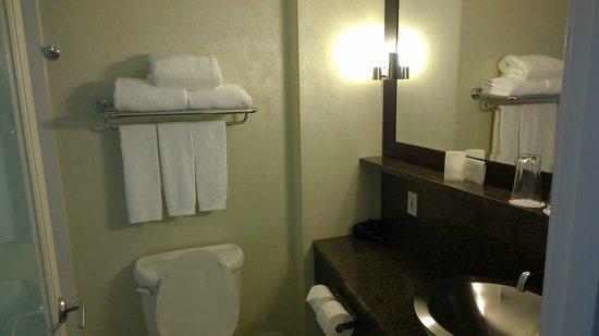 Opus Hotel: Bathroom is well-designed