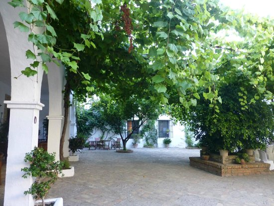 Cortijo Barranco: Courtyard