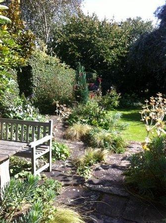 Stillingfleet Lodge Gardens: Wild garden