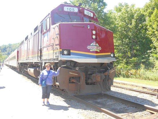 Agawa Canyon Tour Train: Agawa Canyon train tour