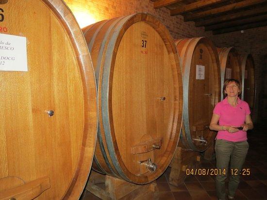 Albino Rocca Winery