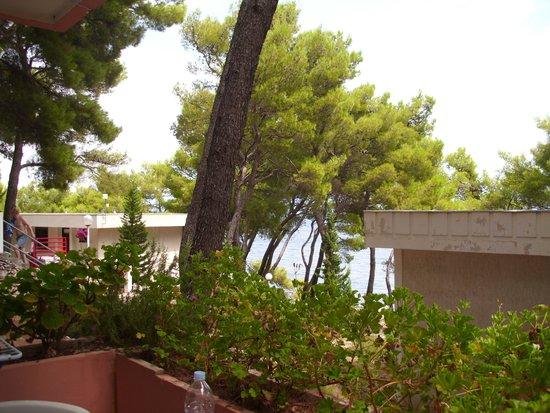 Adriatiq Resort Fontana: Blick von der Terrasse 1