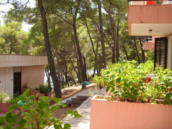 Adriatiq Resort Fontana: Blick von der Terrasse 2